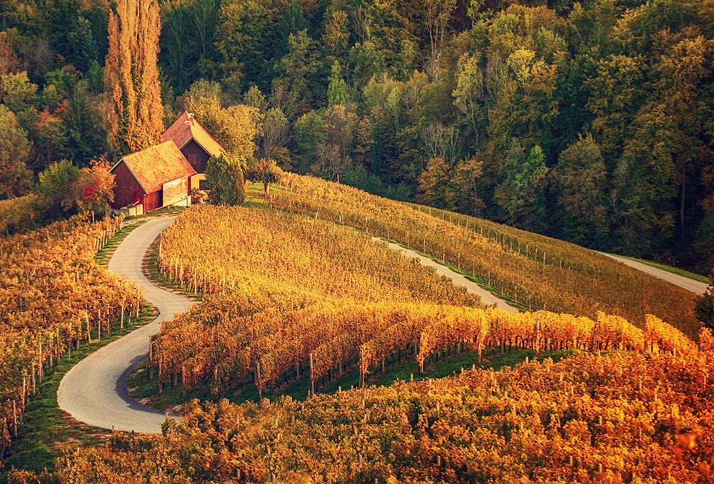 Jesenski oddih v Sloveniji